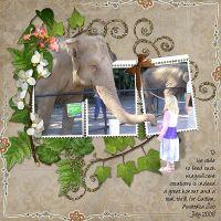 Elephant-Feeding1.jpg