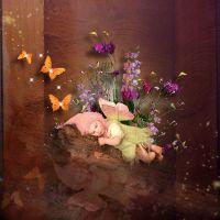 Enchanti_ButterflyDream_kit_3.jpg