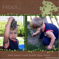 Frogs-000-Page-1.jpg