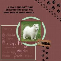 Furry-Friends-Kit_Moonbeam-Designs_2-000-Page-1.jpg