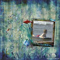 Galvestonweb_copy.jpg