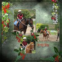 Giggling-Pony-Lessons-12th-Jan2010-II.jpg