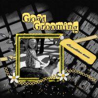 GoatGrooming_1.jpg
