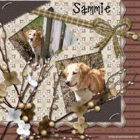 GrannyChallenge-000-Page-2.jpg
