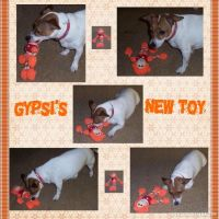 Gypsi-_-New-Toy-000-Page-1.jpg