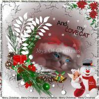HO-_-HO-_-Puddy-Cat-000-Page-1.jpg
