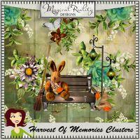 HarvestOfMemories_clusters.jpg