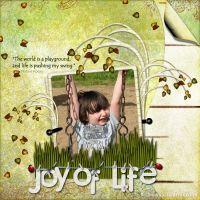 JoysLife-600.jpg