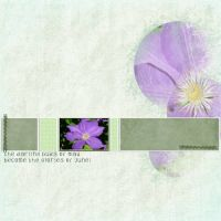 June-_5-002-Flower-Weekly-Challenge.jpg