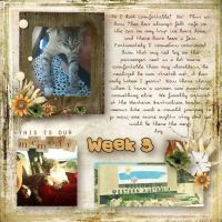 Kapi_52_week_project_-_Kw2_Urban_Fairy_Missing_you.jpg