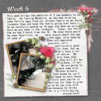 Kapi_52_week_project_-_Kw6_Urban_fairy_Little_love.jpg