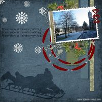 Kit-Winter-by-Carena.jpg