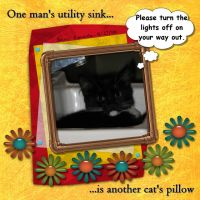 Kitty-Krazy-002-Sink.jpg