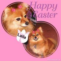 LAILA-004-Page-5.jpg
