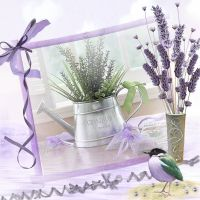 Lavender-Bliss-000-Page-1.jpg
