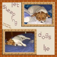 Let-Sleeping-Dogs-Lie-000-Page-1.jpg