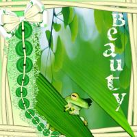 Little-Green-Frog-000-Page-1.jpg
