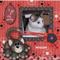 Love-My-Kitty-000-Page-1.jpg