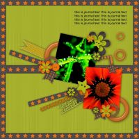 MOTH_Album_1-003.jpg