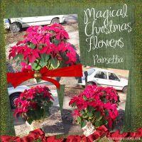 Magic_FlowersRS.jpg