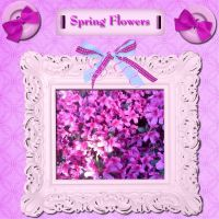 May-Groove-Spring-Flowers-Purple-000-Page-1.jpg