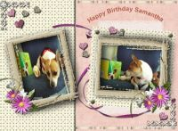 Miscellaneous-001-HappyBirthdaySamantha.jpg