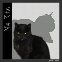 Ms_Kits_8x8_small.jpg