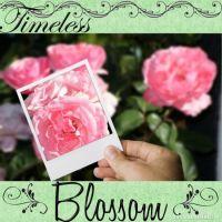 My-Scrapbook-002-florette-flourish_DCA.jpg