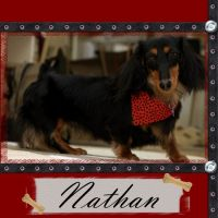 Nathan-Then-and-Now-001-All-Grown-Up_.jpg