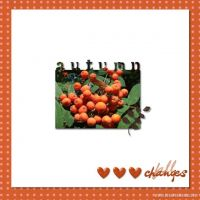 October-2009-_5-000-Autumn-Berries.jpg