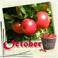 October_479x479.jpg
