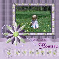 PLO-HDD-SPRING-RAIN-PURPLE-FLOWERS-000-Page-1.jpg