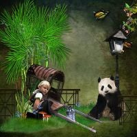 Panda-in-the-Bamboo-LO1.jpg