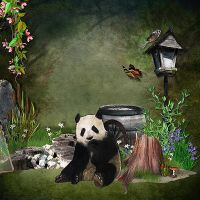Panda-in-the-Bamboo-LO5-DoublePage-RIGHT.jpg