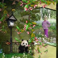 Panda-in-the-Bamboo-LO6.jpg