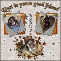 Pets-000-Page-12.jpg