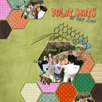 PolarBearsAtTheZoo_1.jpg