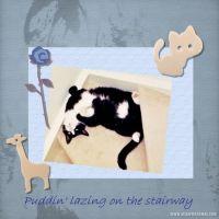 Puddin_-000-Page-2.jpg