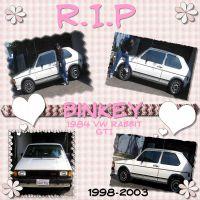 RIP_Binkey_Car-screenshot.jpg