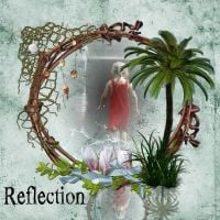 Reflection_by_Carena.jpg