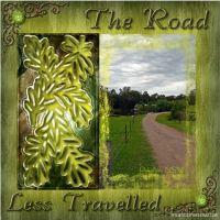 Road_less_travelled.jpg