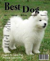 SBM-July-2012-Monthly-Designer-Challenge-000-Page-1.jpg