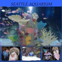 SEATTLE-AQUARIUM-000-Page-1.jpg