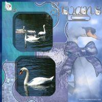 Scrapbook-10-004-Swans.jpg