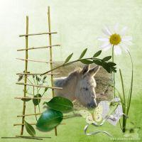 Scrapbook-10-012-Donkey.jpg