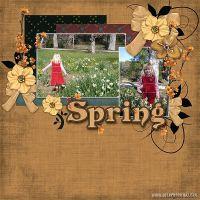 Spring-Aug-2007.jpg
