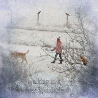 StarSongStudio_-_WinterGarden2.jpg