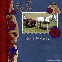 Sweet-Memories.jpg