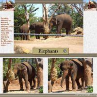 Taronga-Zoo-001-Page-2.jpg