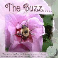 The_Buzz.jpg